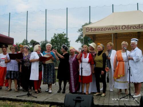 Kabaret SIT Talent na pikniku w Oględowie